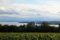 Bodensee2017_012