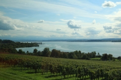 Bodensee2017_013